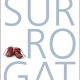 Surrogat - Vores historie med en surrogatmor